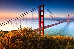 20 Top-Rated Tourist Attractions in San Francisco