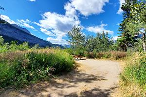 6 Best Campgrounds in Canmore, Alberta