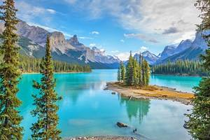11 Top-Rated Things to Do in Jasper, Alberta