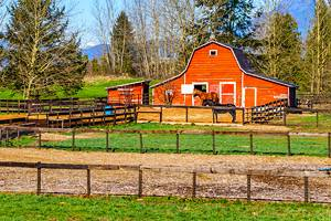 11 Top-Rated Things to Do in Langley, BC