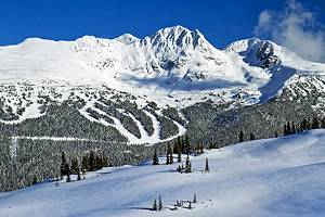 12 Top Things to Do in Whistler & Easy Day Trips