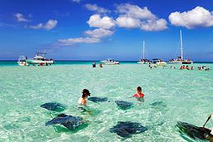 14 Top-Rated Tourist Attractions in the Cayman Islands
