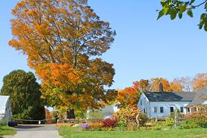 16 Top-Rated Things to Do in Litchfield, CT