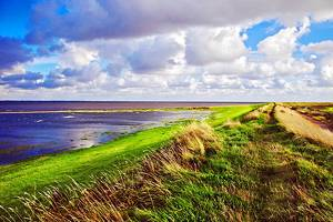 13 Top Tourist Attractions in Esbjerg & Easy Day Trips