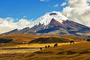 10 Top-Rated Tourist Attractions in Ecuador