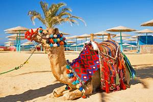 13 Top-Rated Tourist Attractions in Hurghada
