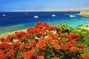 10 Top Tourist Attractions in Sharm el-Sheikh & Easy Day Trips
