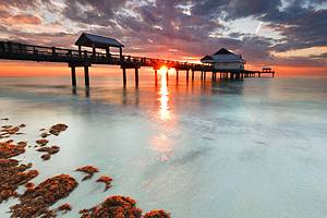 12 Top-Rated Tourist Attractions in St Petersburg and Clearwater