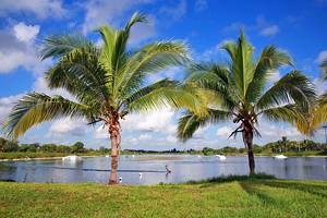 11 Top-Rated Things to Do in Coconut Creek, FL
