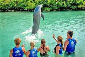 12 Top-Rated Florida Keys Resorts for Families