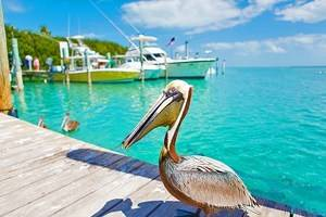 Florida in Pictures: 15 Beautiful Places to Photograph