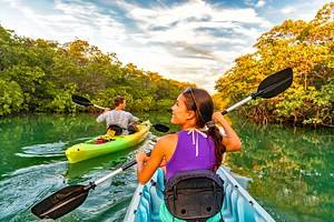 12 Top-Rated Attractions & Things to Do in Islamorada, FL