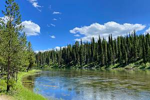 7 Best National Forests in Idaho