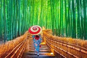 Japan in Pictures: 15 Beautiful Places to Photograph