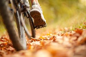 9 Top-Rated Mountain Bike Trails in Minnesota