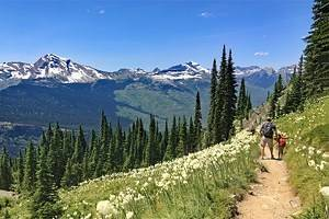 12 Top-Rated Hiking Trails in Montana