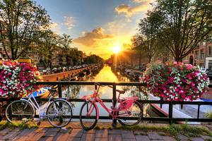 10 Top-Rated Tourist Attractions in the Netherlands