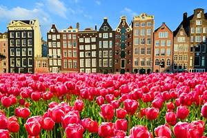 14 Top-Rated Cities in the Netherlands