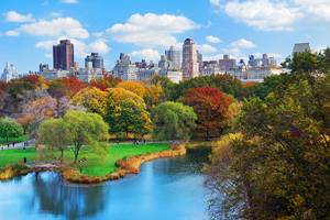 Exploring New York's Central Park: A Visitor's Guide