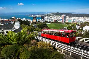 14 Top-Rated Tourist Attractions in Wellington