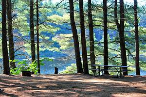 8 Best Campgrounds in Algonquin Provincial Park