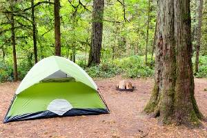 12 Top-Rated Campgrounds near Portland, Oregon