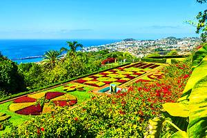 16 Top-Rated Tourist Attractions in Funchal