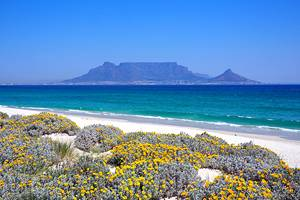 12 Best Beaches in Cape Town