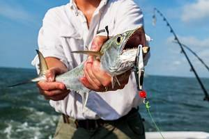 3 Top-Rated Places for Deep Sea Fishing in South Carolina