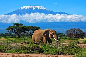 15 Top-Rated Tourist Attractions in Tanzania