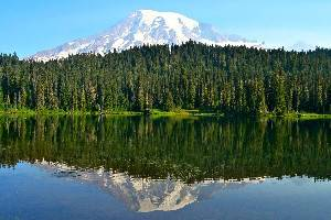 10 Top-Rated Campgrounds at Mt. Rainier National Park