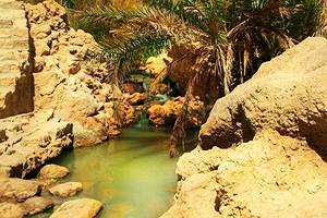 Exploring Tozeur's Oasis: A Visitor's Guide