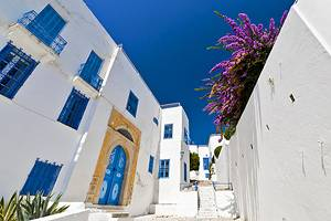 Exploring Sidi Bou Said: Tunis' Picturesque Seaside Suburb