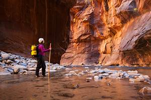 10 Top-Rated Hiking Trails in Zion National Park