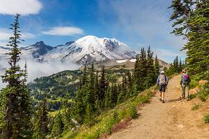 12 Top-Rated Hikes in Mount Rainier National Park, WA