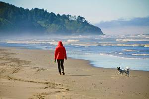 13 Best Beaches in Washington State