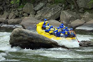 West Virginia's Top Rivers for Whitewater Rafting