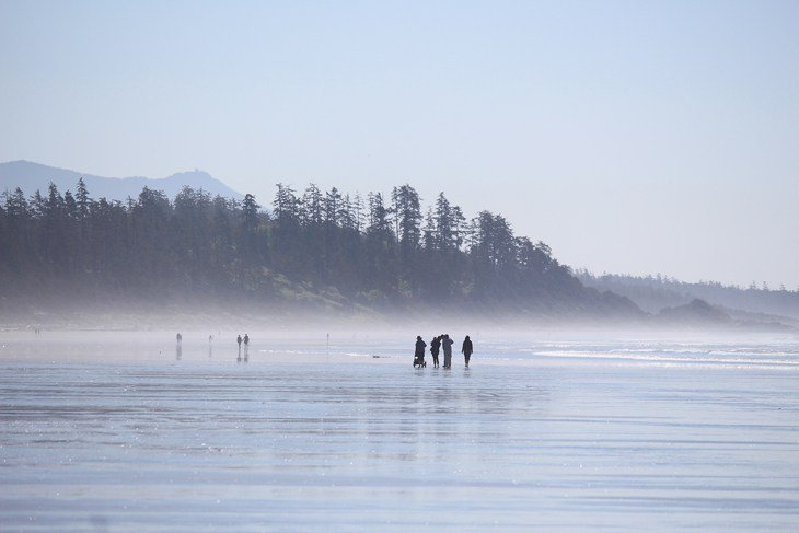 13 Top Rated Things To Do In Tofino Bc