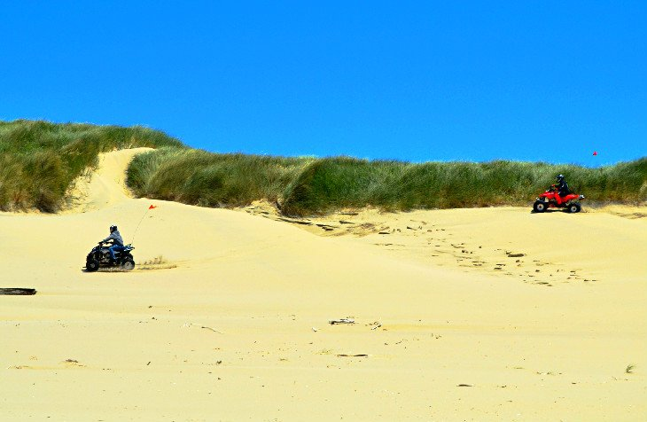 Vehículos todoterreno en la playa cerca de Jessie M. Honeyman Memorial State Park
