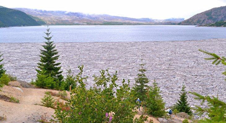 Alfombra de troncos Spirit Lake