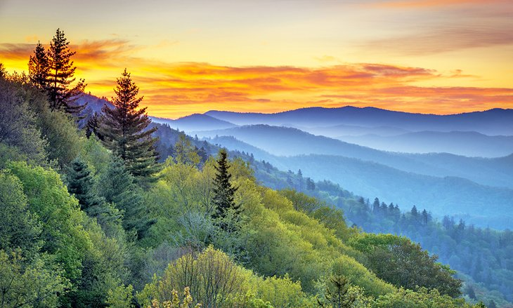 15 Top Rated Attractions Things To Do In Asheville