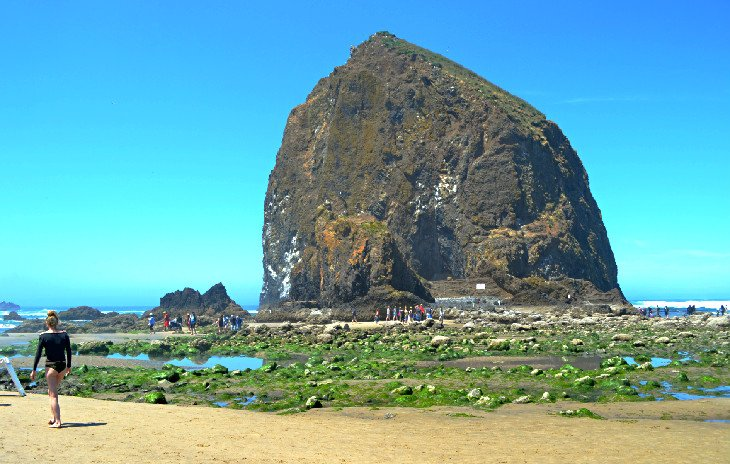 Haystack Rock at Cannon Beach during low tide