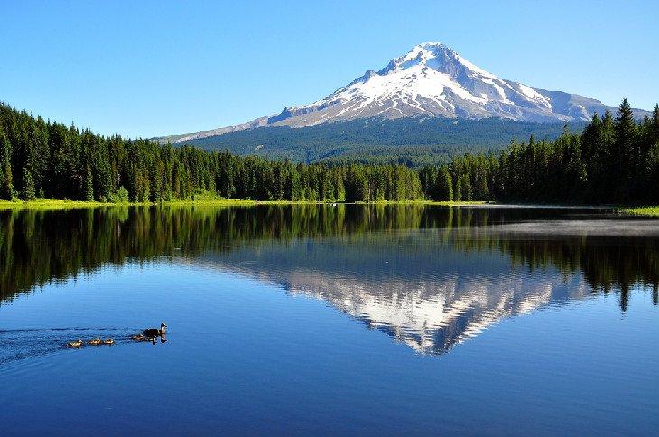 Lago Trillium