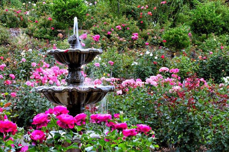 Jardín Internacional de Pruebas de Rosas