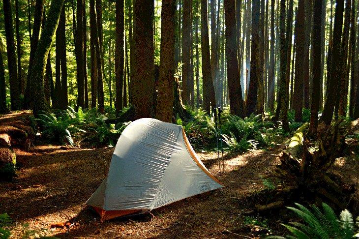 Campamento de mochileros Tillamook Head