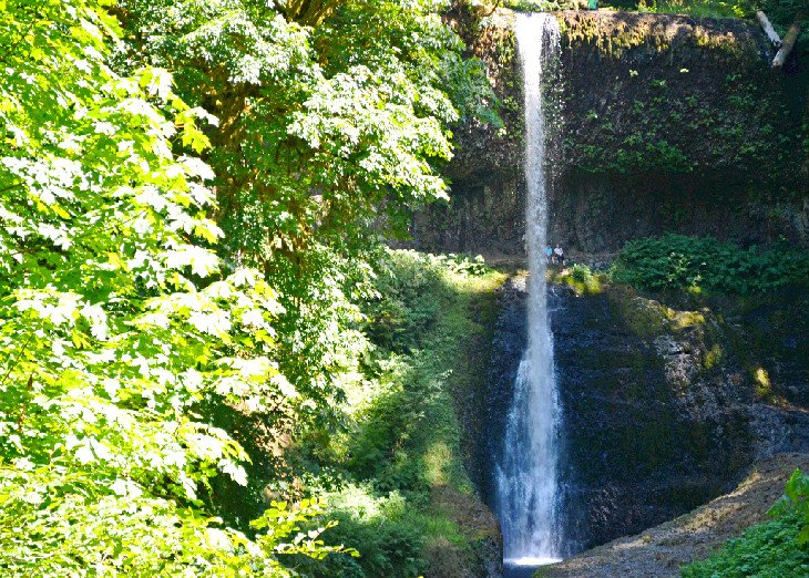 Waterfall at Silver Falls State Park
