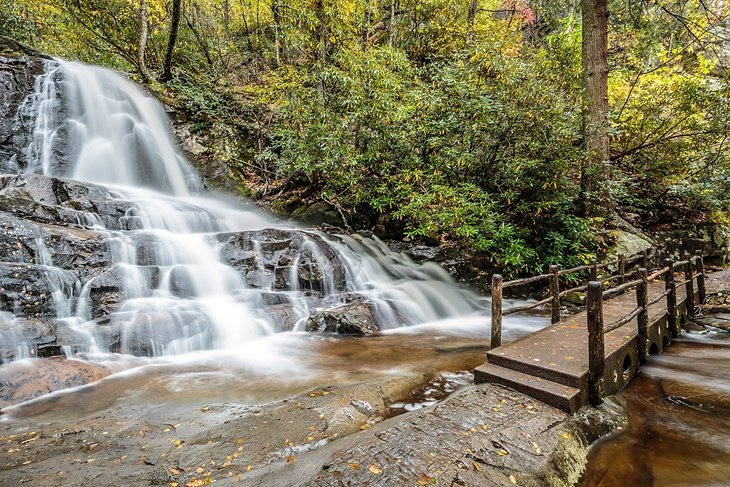 Waterfalls in Great Smoky Mountains National Park