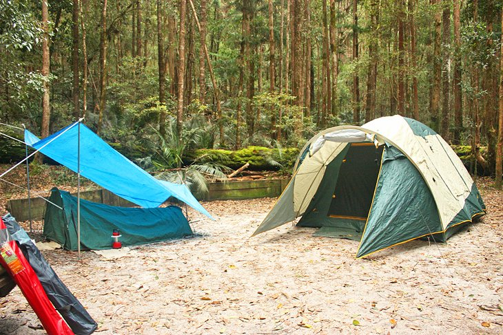 Camping in the forest on Fraser Island
