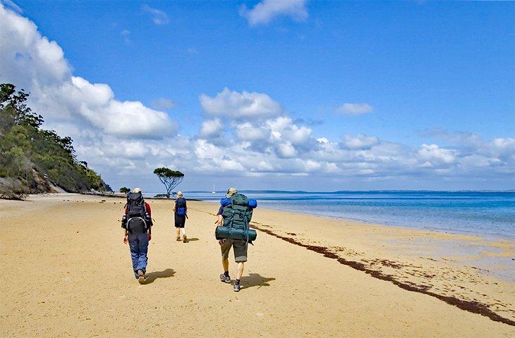 Gran paseo por la isla de Fraser