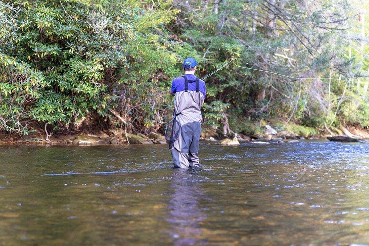 Pesca con mosca en el oeste de Carolina del Norte